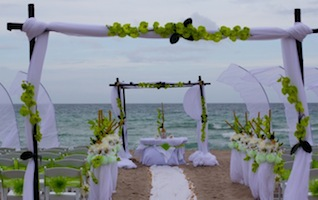 beach_wedding theme party decor