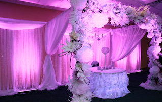 fabric drapped backdrop and table